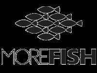MoreFish: новый формат забытых рыбных лавок